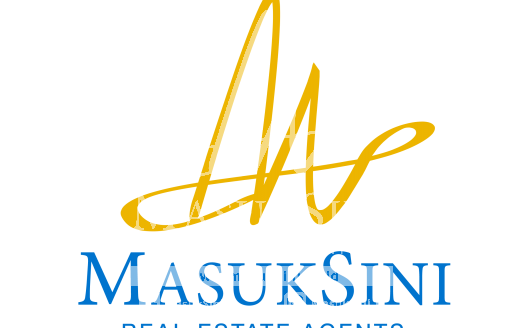 agent picture