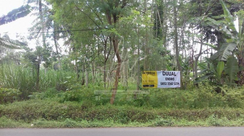 Tanah Dijual Di Ahmad Yani Malang
